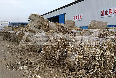 Proyecto de trituración de biomsa en el noreste de China
